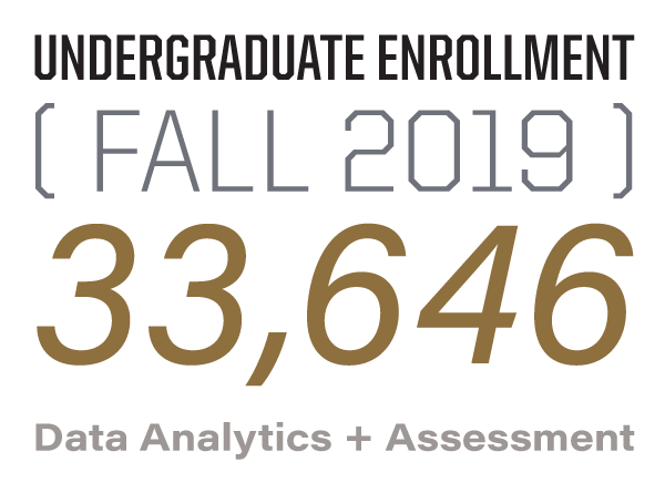 undergraduate enrollment fall 2017: 31, 006